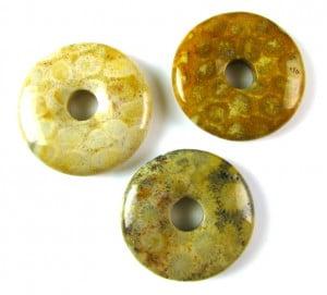 fossil jasper donut