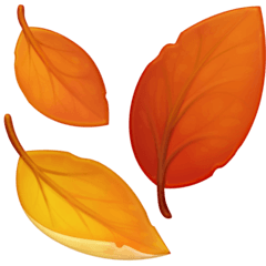 Autumn Picks